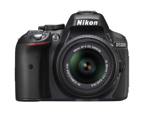 Nikon D5300 24.2 MP CMOS Digital SLR...