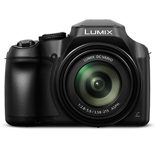 PANASONIC LUMIX FZ80 4K Digital Camera,...