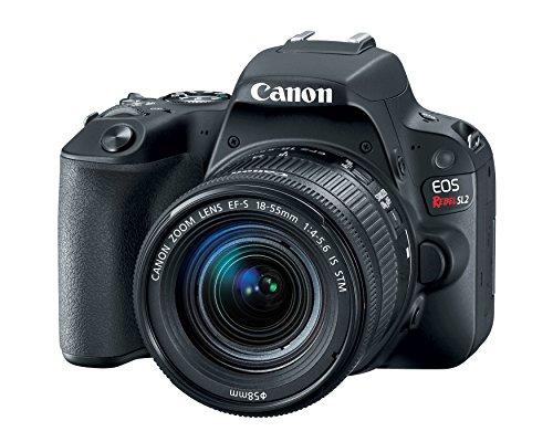 Canon EOS Rebel SL2 DSLR Camera with...